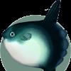 Mondfischi