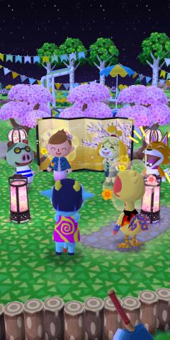 Blütenpicknick