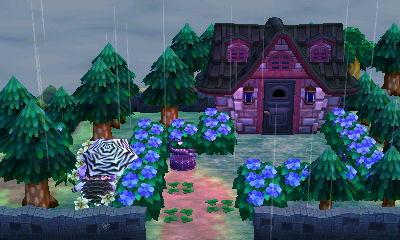 Marions (vorübergehendes) Haus