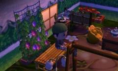Indoor Garten