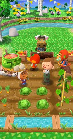 Jornas Gemüsegarten