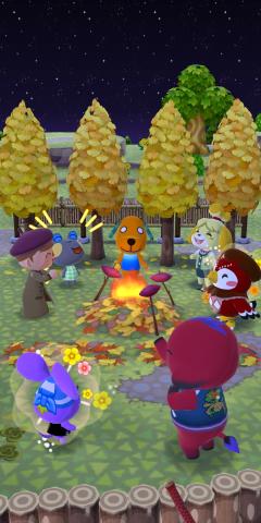 Herbstfarbenfreude