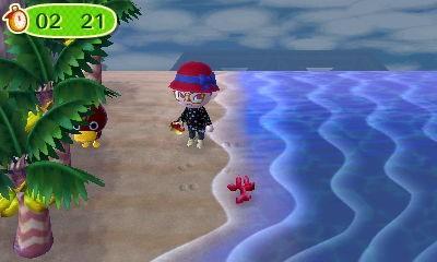 Versteck am Strand...