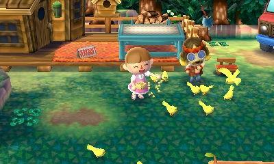 Vögel Füttern mit Harvey