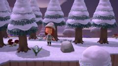 So viel Schnee, da wirkt der Wald noch schöner <3