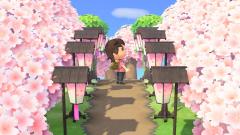 Erinnerungen an den Frühling