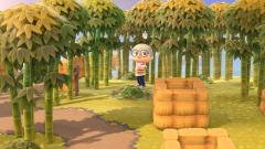 Everdales neuer Bambuswald