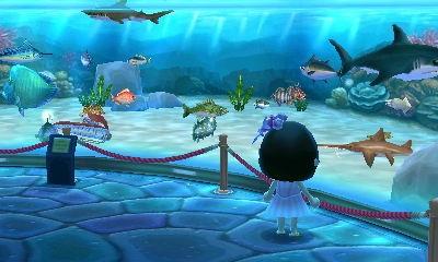 Starbays Unterwasserwelt