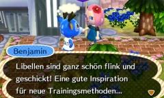 Libellen-Benjamin
