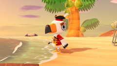 Pirat zu Besuch 🏴☠️