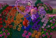 Regenbogengarten <3