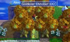 Goldener Oktober (Obwohl November ist)