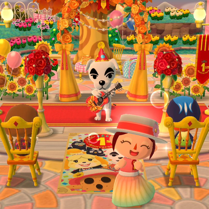 1 Jahr Pocket Camp