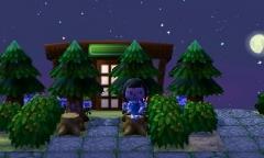 Pause unter dem Zedernbaum