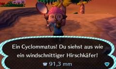Cyclommatus