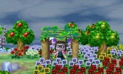 Unter der Blumenpergola