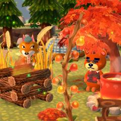 Lagerfeuer, Herbstluft und Pilzsuppe