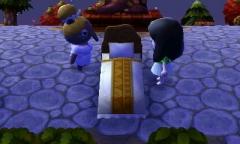 Vom Traum zum Schlaf