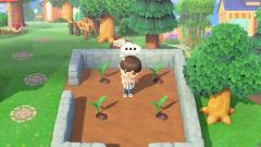 Gartenarbeit, oder so...
