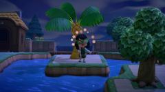 Hula auf der Insel im Fluss