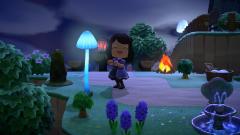 Pilze machen Luna glücklich