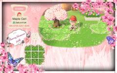 Meine Idee zu einem Kirschblüten Weg