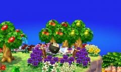 Frühling in Starbay