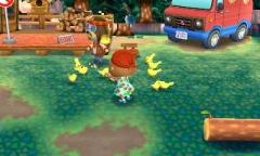 Vögelchen füttern