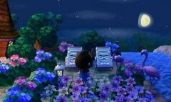 Flamingos im Mondschein
