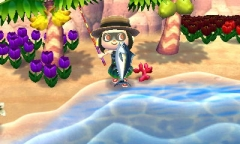 Endlich wieder ein Thunfisch