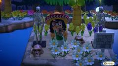 Mit Tarantel auf der Toteninsel