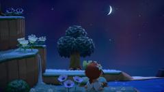 Ein weiterer schöner Abend:)